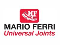 MARIO FERRI